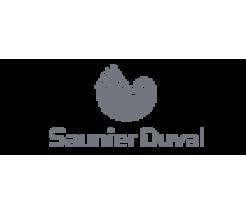 Запчасти    Saunier  Duval